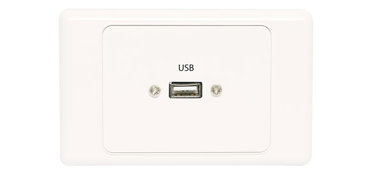 P5966 USB Single Wallplate Dual Cover with Plug Flylead