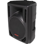 C0993 254mm 10 Inch 2 Way MP3 USB Powered PA Speaker