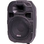 C1000B 254mm 10 Inch 2 Way PA Speaker