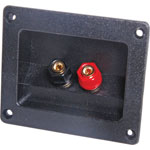 P2018 2 Way Speaker Terminal Binding Post Rect.