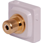 P7995 White RCA to F Clipsal Clip-In Mechanism