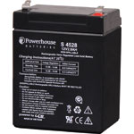 S4528 12V 2.9Ah Sealed Lead Acid (SLA) Battery