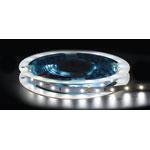 X3199A 3528 Cool White 12 Volt LED Strip Light 5m